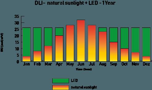 DLI-DailyLightIntegral-Sunlight-and-LED-grow-light