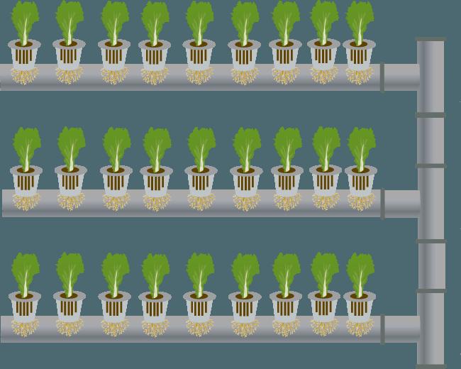 vertical farming application greenwall