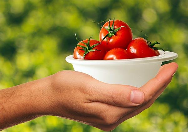 Tomatoe-hand-600-horti-application