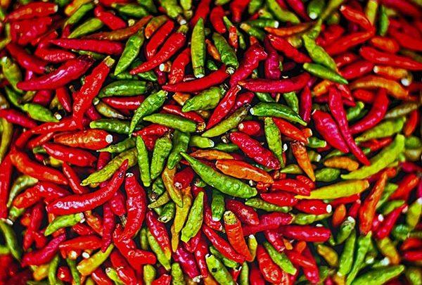 chili - pepper