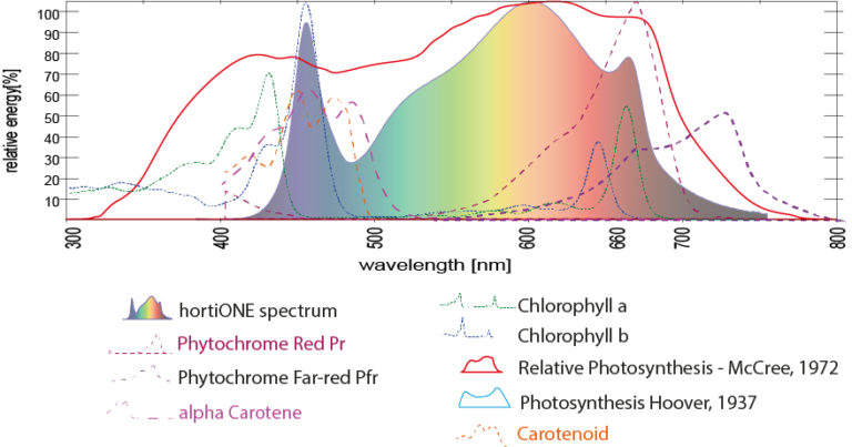 hortiOne Spectrum - absorption curves