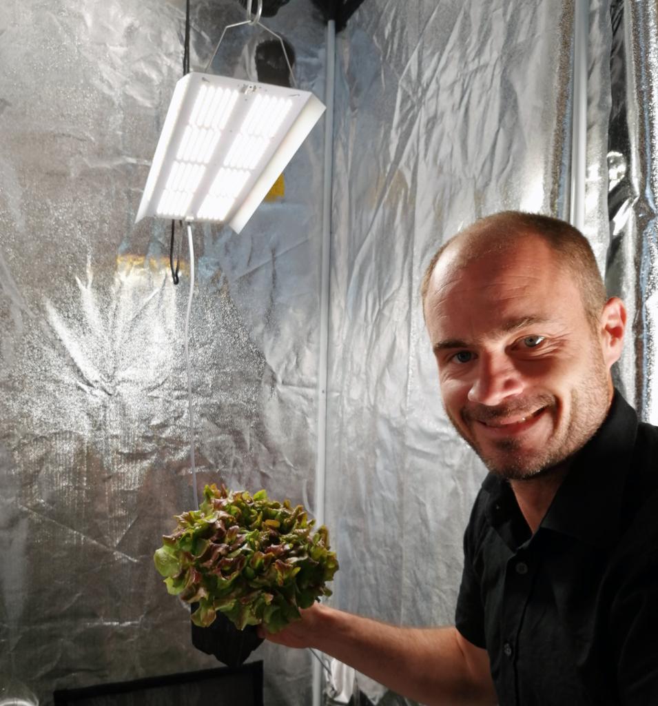 Press: hortiONE Lampen für den heimischen Hobbygärtner JK hortiONE368 Salat Zelt 1