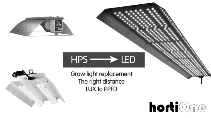 Replace-your-grow-light-Distance