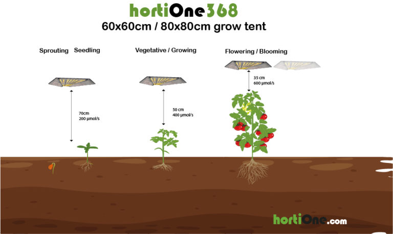 hortiONE368-Distance-@4x-100